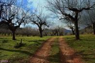 Ruta de Isabel la Católica (Cañamero - Guadalupe)